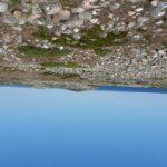 Vy över klapperstensfält med havet i bakgrunden